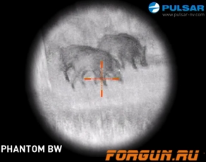 Прицел ночного видения (2+) Pulsar Phantom 4x60 BW, 76058BWT
