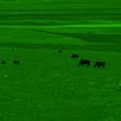 Монокуляр ночного видения (1+) Yukon NV 5x60, 24065
